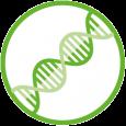 Logo corsi di laurea in Biotecnologie